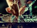 Bandas, Músicos e DJ's